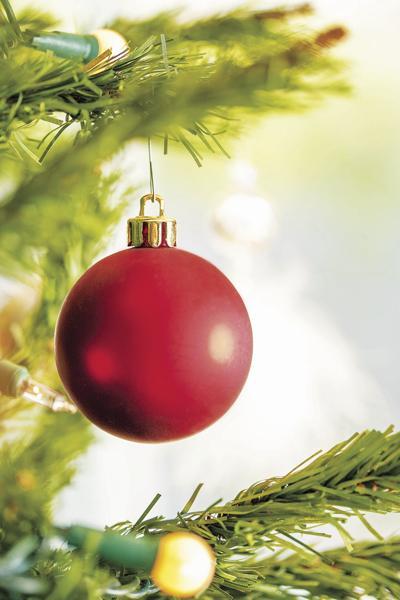 Christmas Tree (2019)