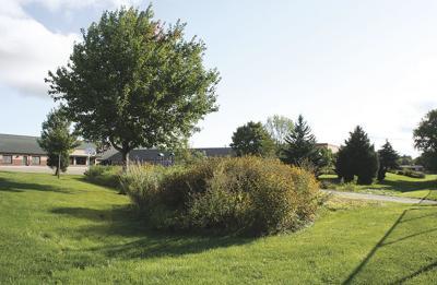 Biofilter at Prairie Elementary School