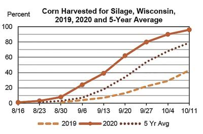 Corn harvested for silage (October 2020)