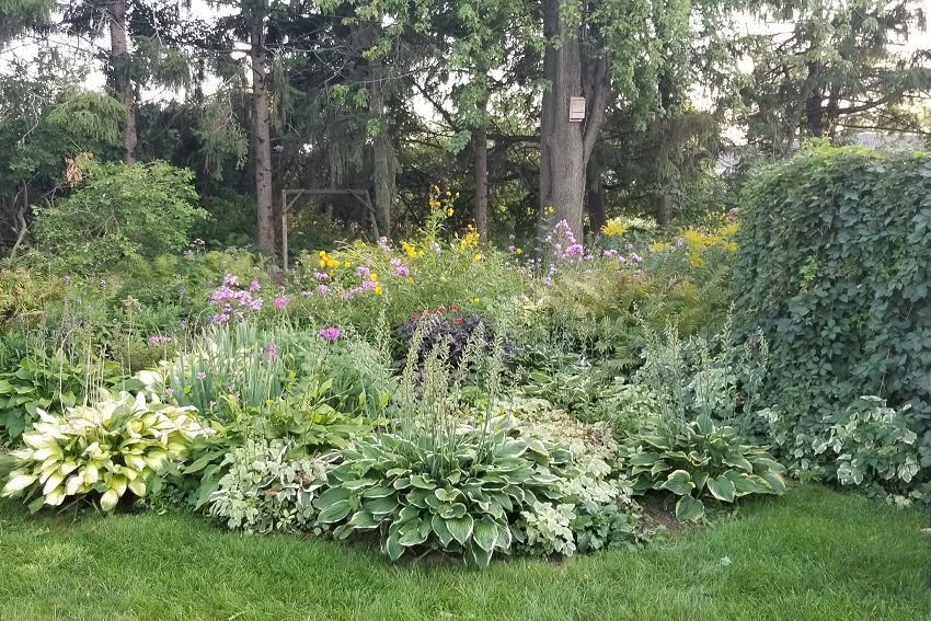 September Sun Prairie Garden of the Month