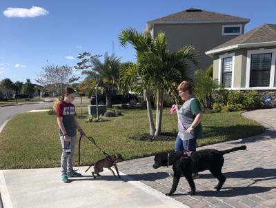 Pets and solicitation