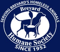 Brevard Humane Society partners with Precision Race for 'Pets 2 the Rescue' virtual walk/run event