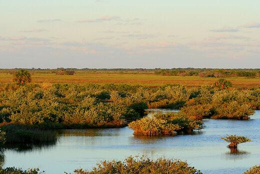 Merritt Island National Wildlife Refuge (MINWR)