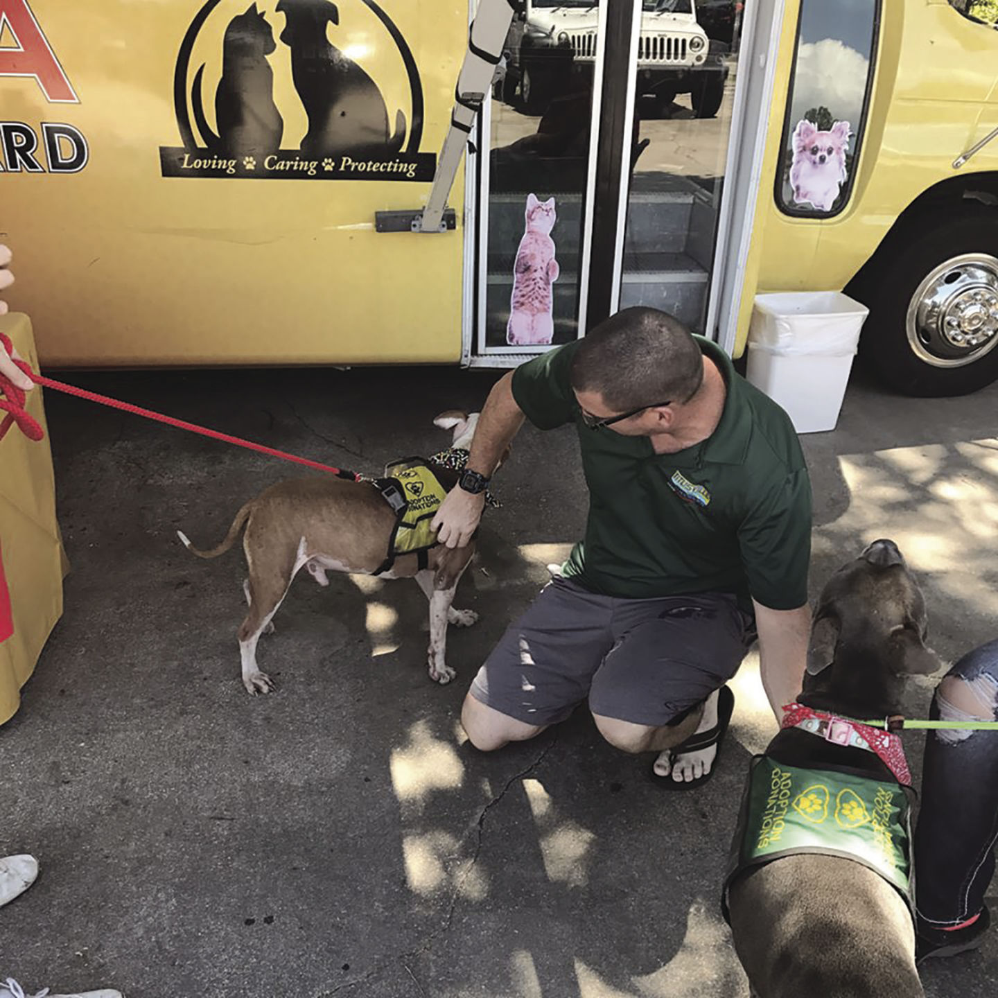 SPCA Adoption Dogs Help To Collect Donations For The Brevard SPCA Adoption  Center At A Previous Titusville Chrysler Dodge Jeep Car Show.
