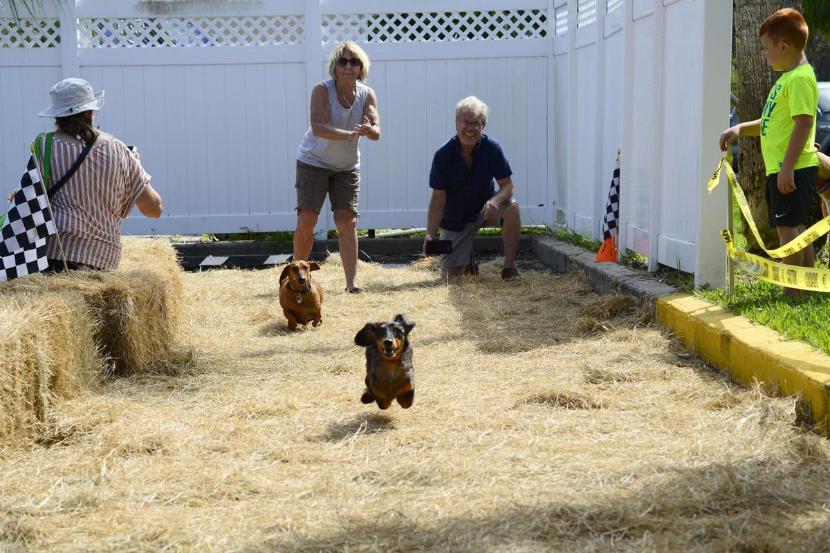 Running of the Weiners