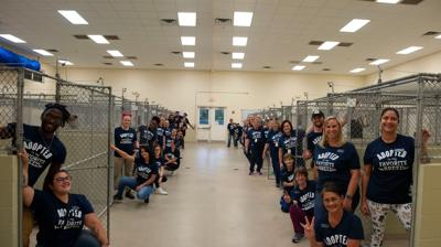 HSVB employees in kennels for Clear the Shelters
