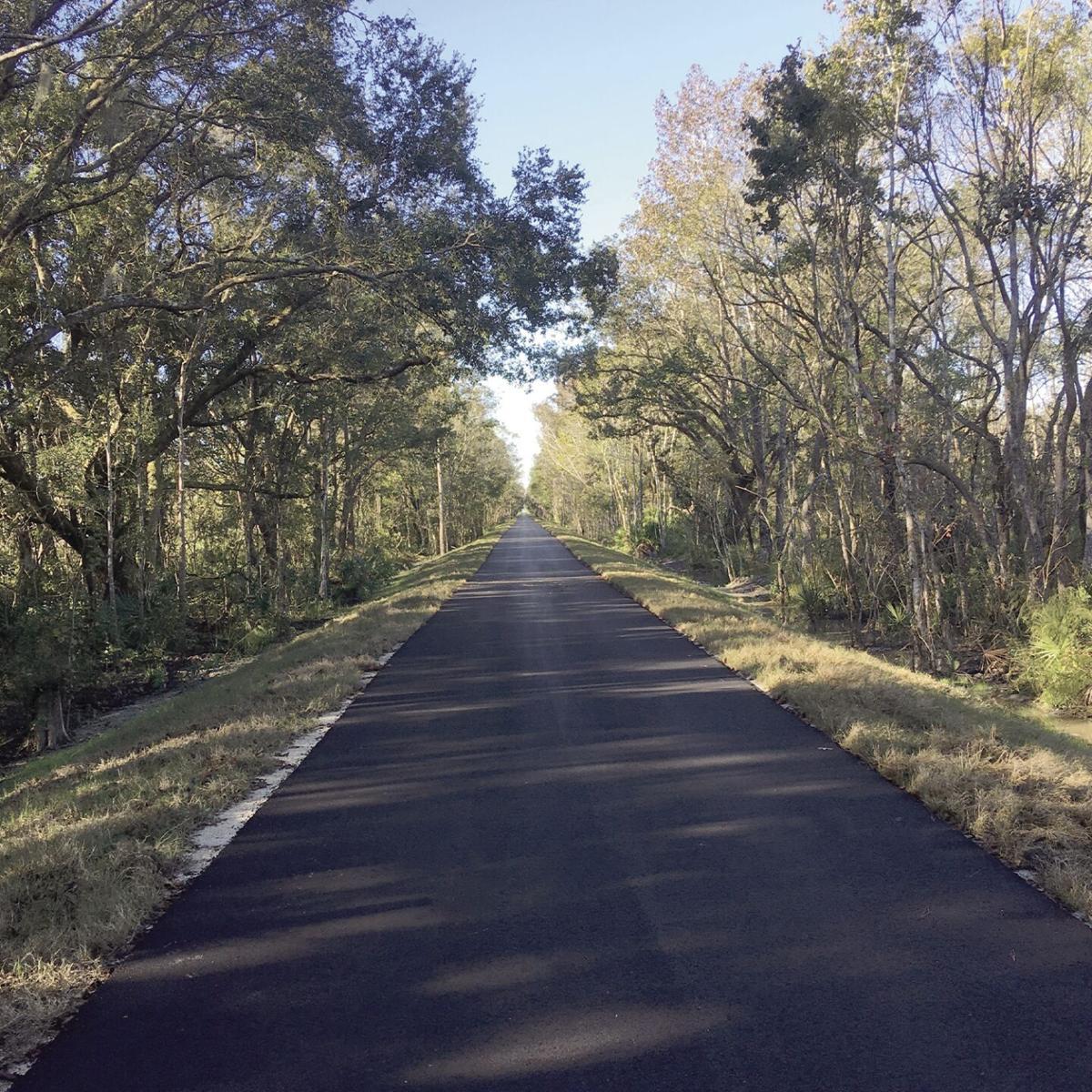 Sun Trail 1