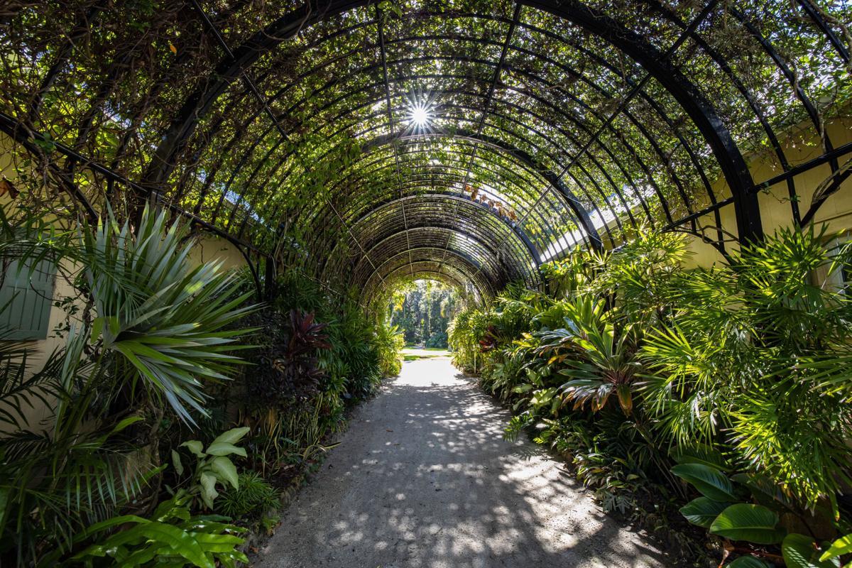 McKee Botanical Garden pergola