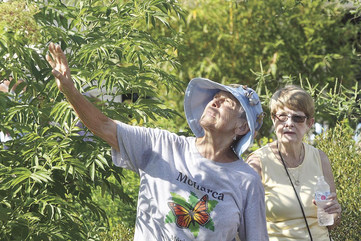Volusia County Master Gardener Plant Faire