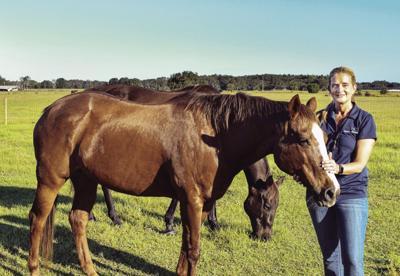 Horse Therapist