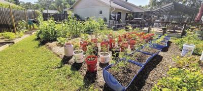 Garden Toil