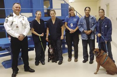 Jailhouse Dogs