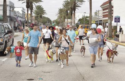 Creative Costumes In The Pooch Parade Of Blocktoberfest Celebration First Saay On C Street New Smyrna Beach Last Year