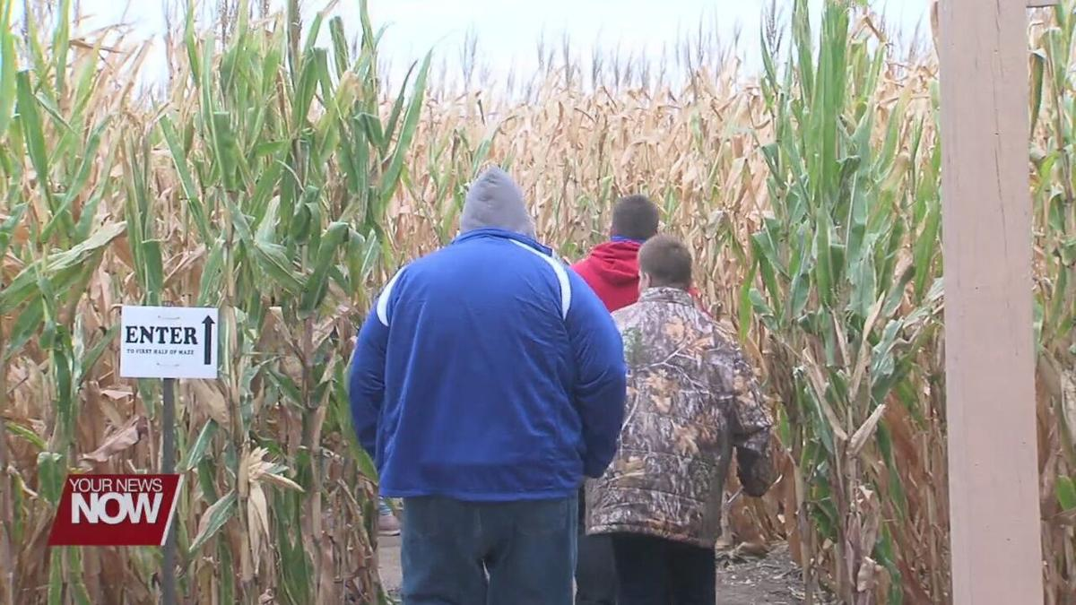 Suters corn maze offers sense of fall normalcy for local families