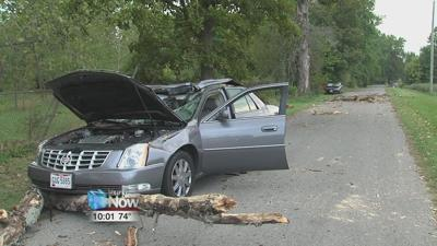 Man hurt by a tree limb after it crashes through his car's windshield 1.jpg