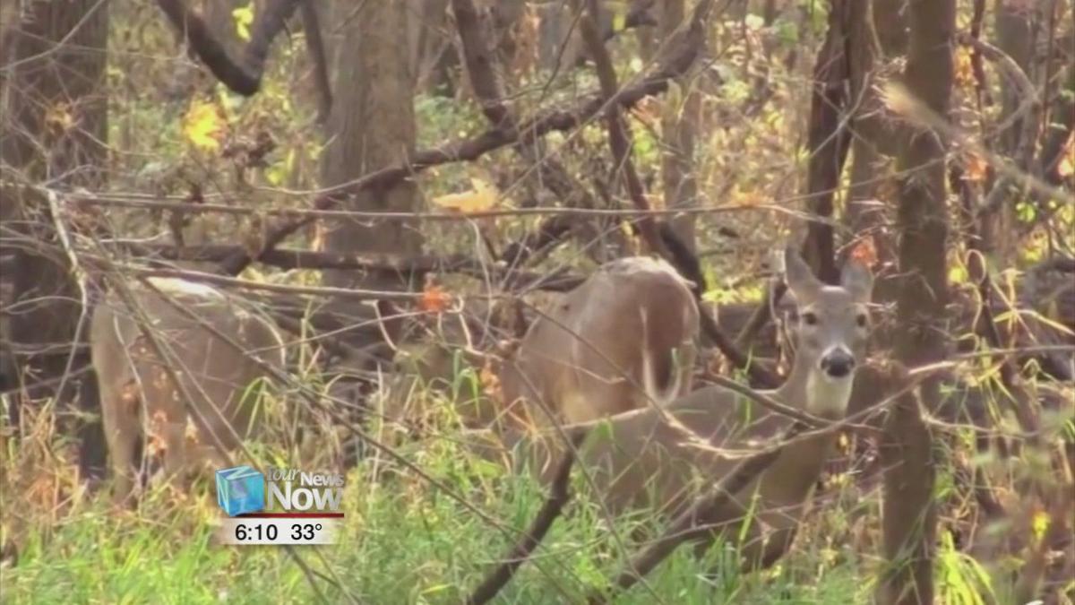 Ohio Deer Gun Season begins on Monday