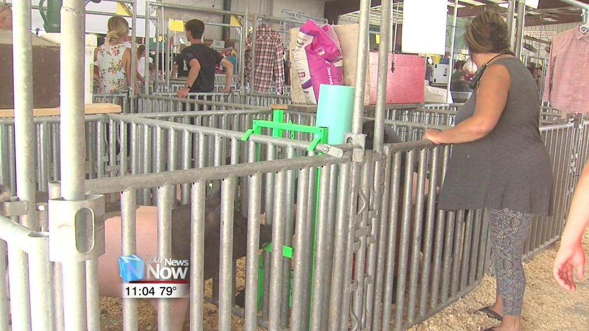 Auglaize County Fair opens its gates for 167th year.jpg