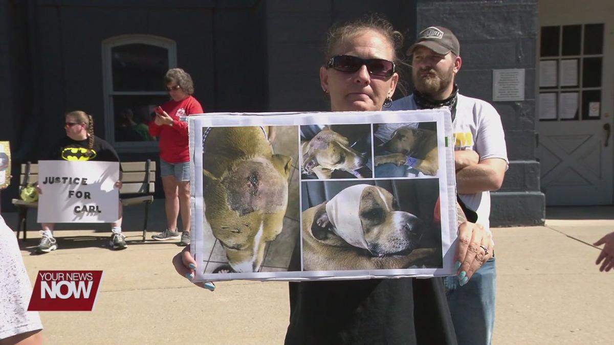 Animal cruelty charge sparks questions about Ohio's laws on animal abuse