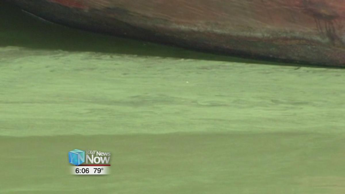Keep an eye out for excessive algae when in or around water 1.jpg