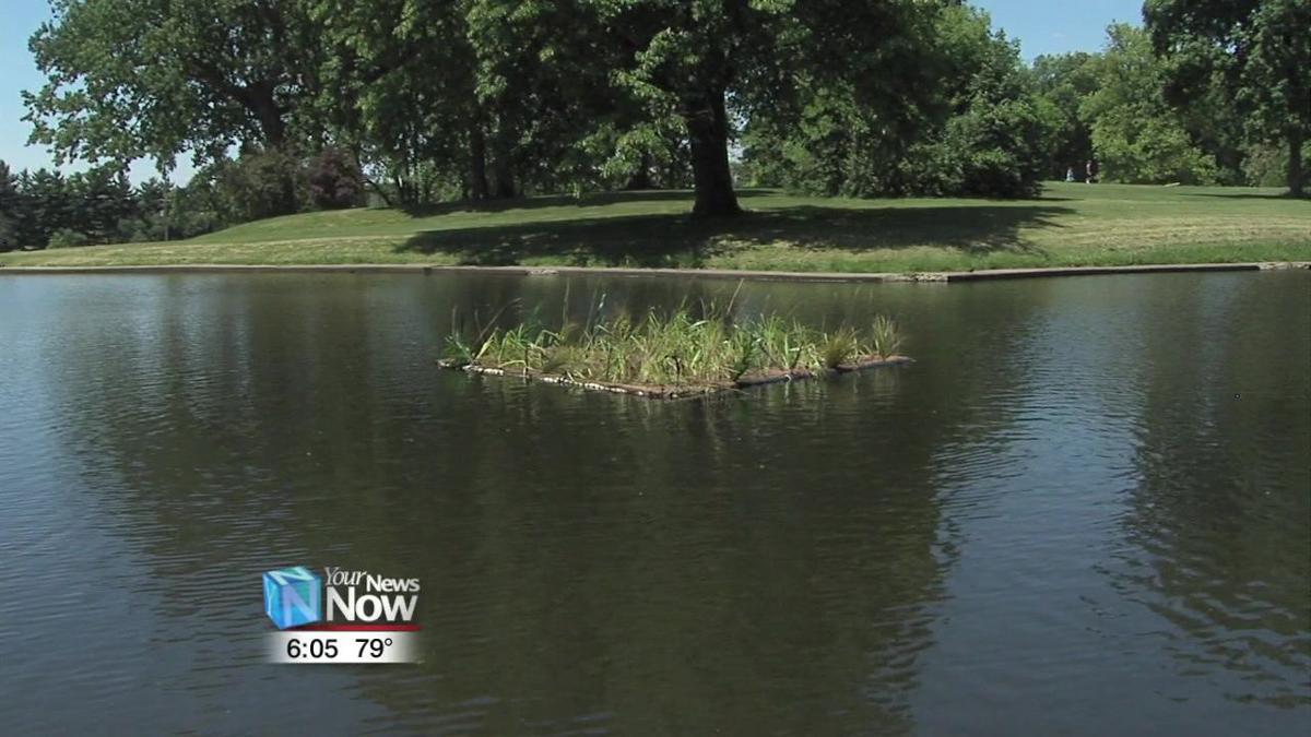 Floating Wetlands helping Faurot ponds get healthy.jpg