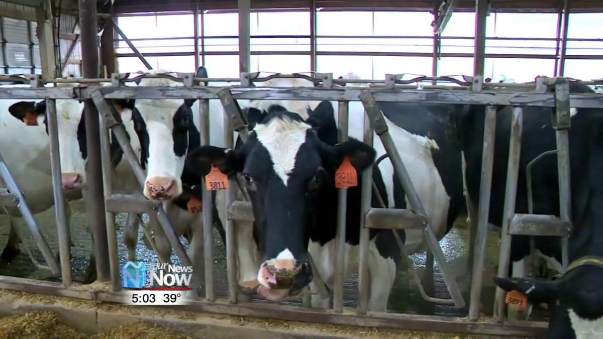 Congressman Bob Latta's thoughts on new farm bill 1.jpg