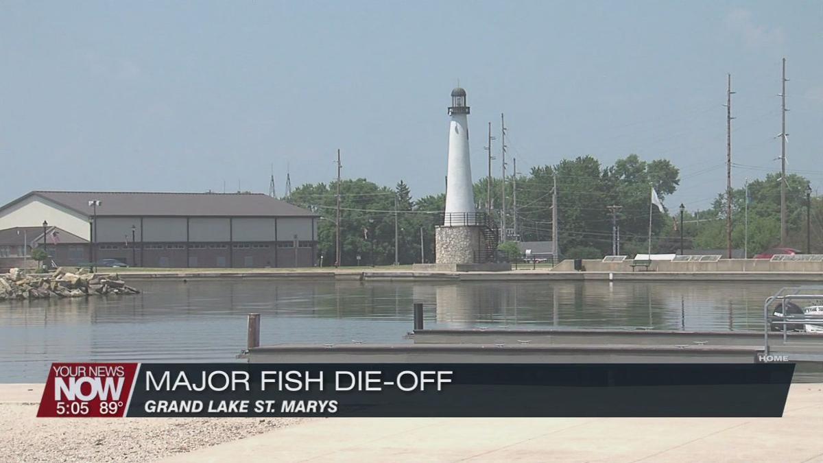 Major fish die-off at Grand Lake St Marys