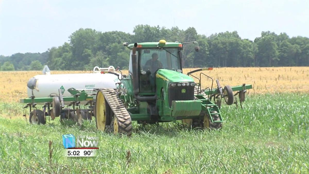 Area farmers hope for good weather here on out for a serviceable yield 1.jpg