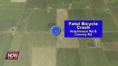 Bicyclist in Van Wert County was struck and killed Friday night