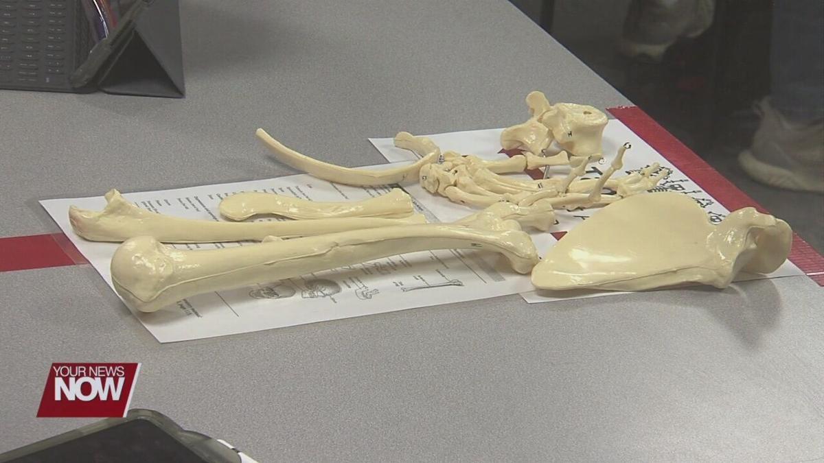 St. Rita's now home to Ohio State Lima's advanced anatomy lab