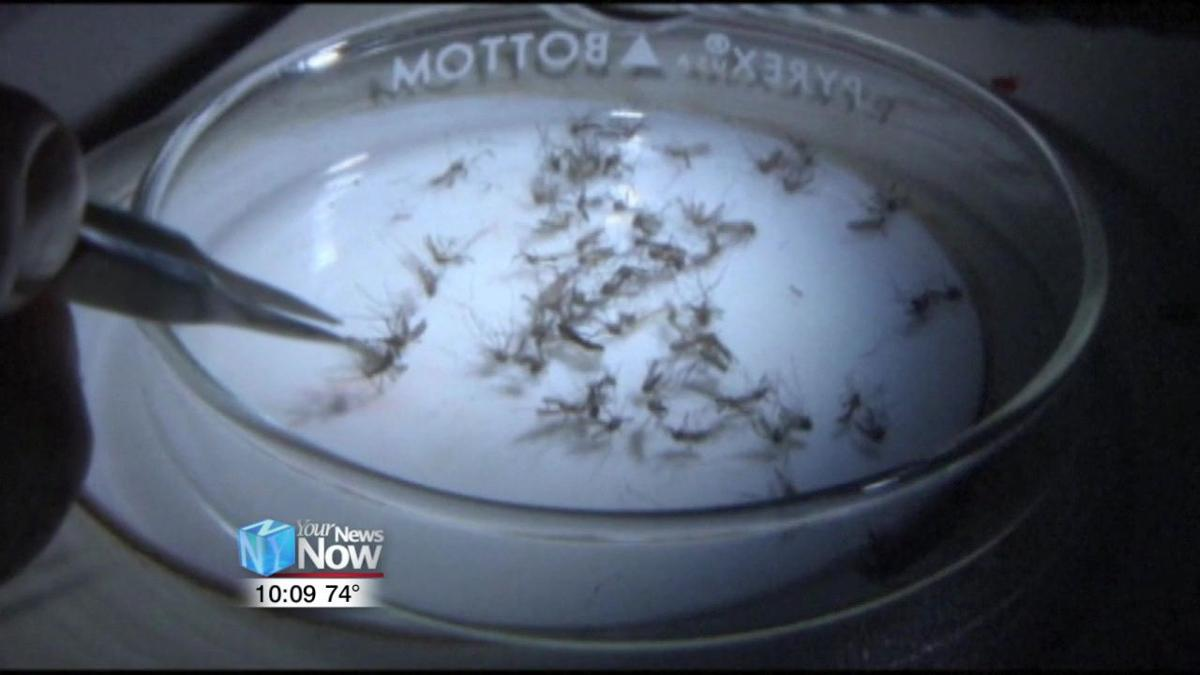 Mosquitoes test positive for West Nile Virus in Hancock County 1.jpg
