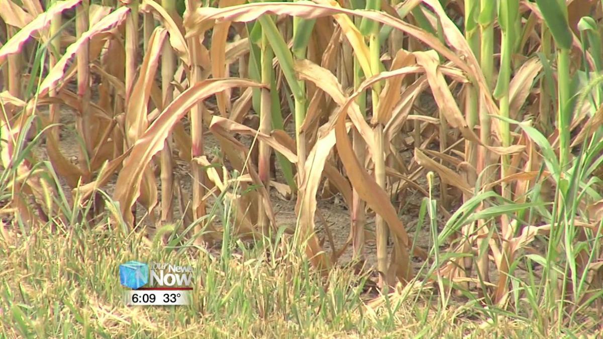 Farmers adjust to government shutdown 1.jpg