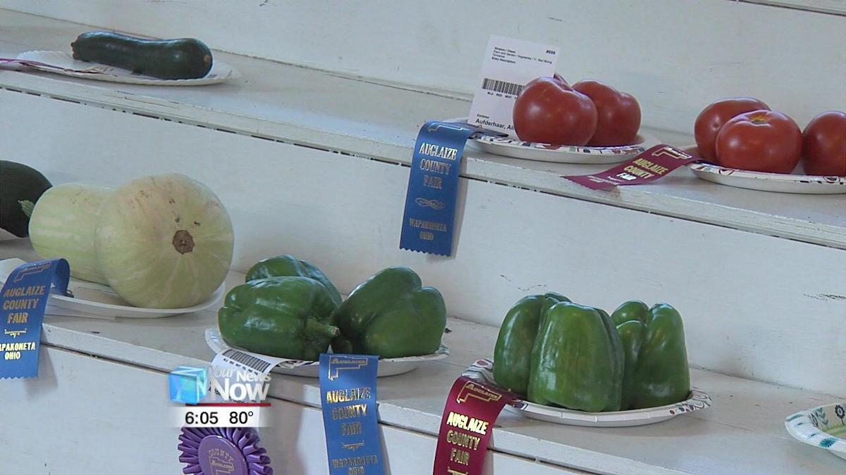 Fruits and veggies lacking for Auglaize County Fair competitions 1.jpg