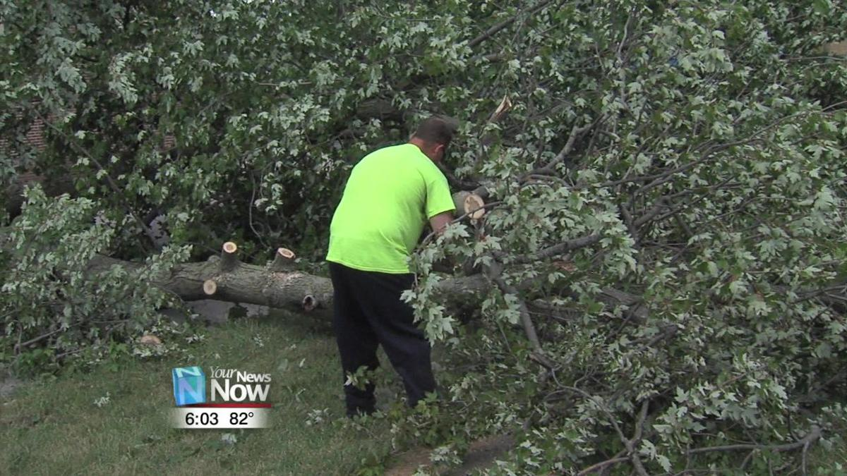 Lima begins tree clean up following Wednesday storm 2.jpg