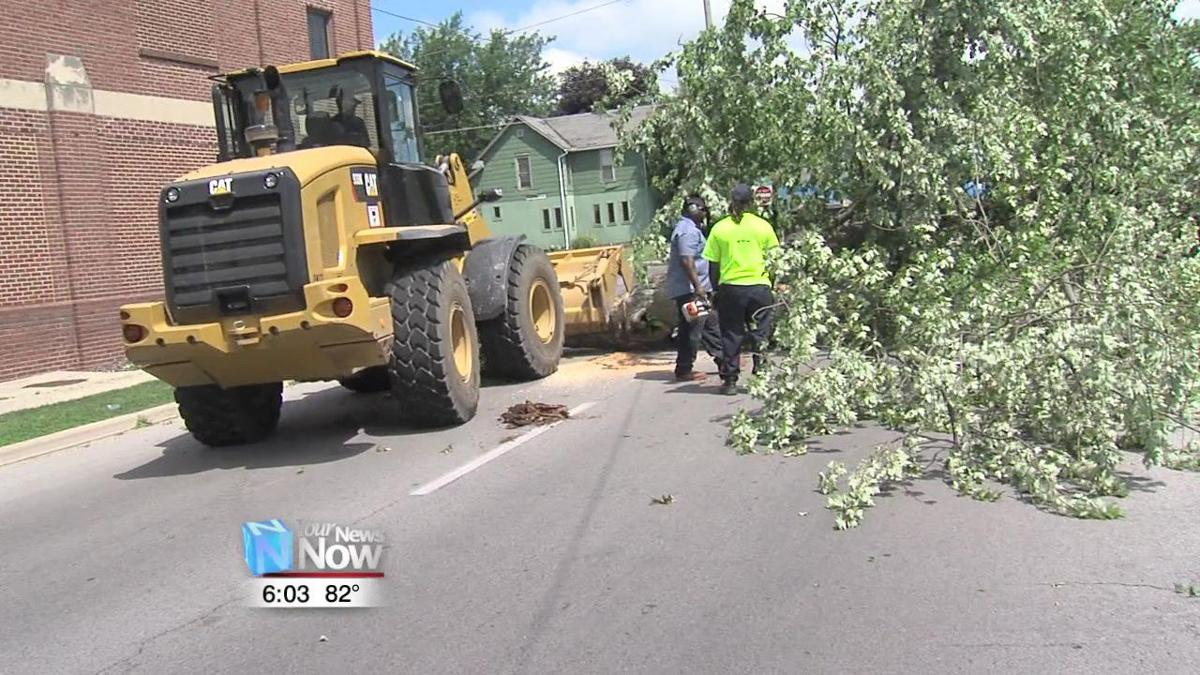 Lima begins tree clean up following Wednesday storm 1.jpg
