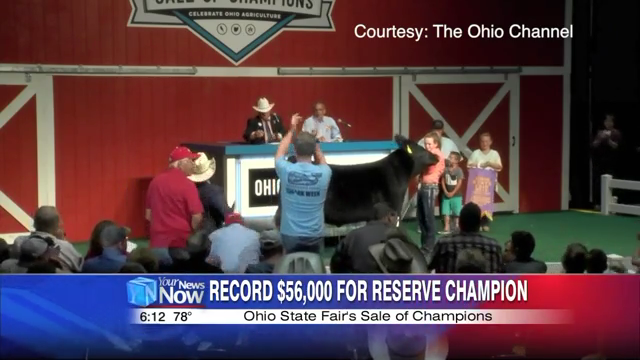 Allen County steer sets record at Ohio State Fair Auction | News