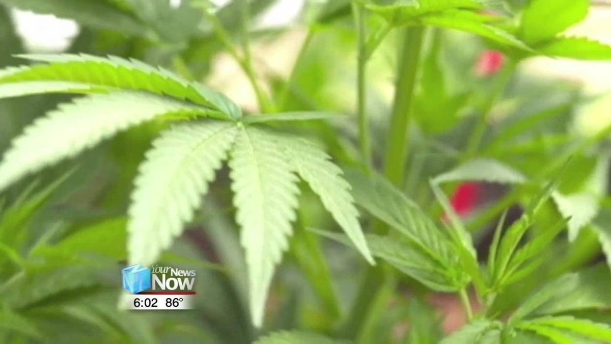 With legalization of hemp, Lima taking conservative approach in enforcement and prosecution 2.jpg
