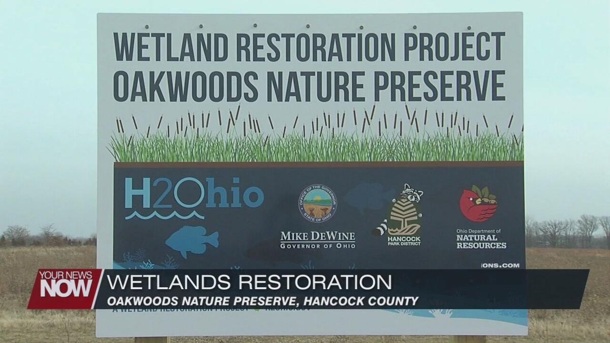 New wetlands will improve water and wildlife habitats in Hancock County