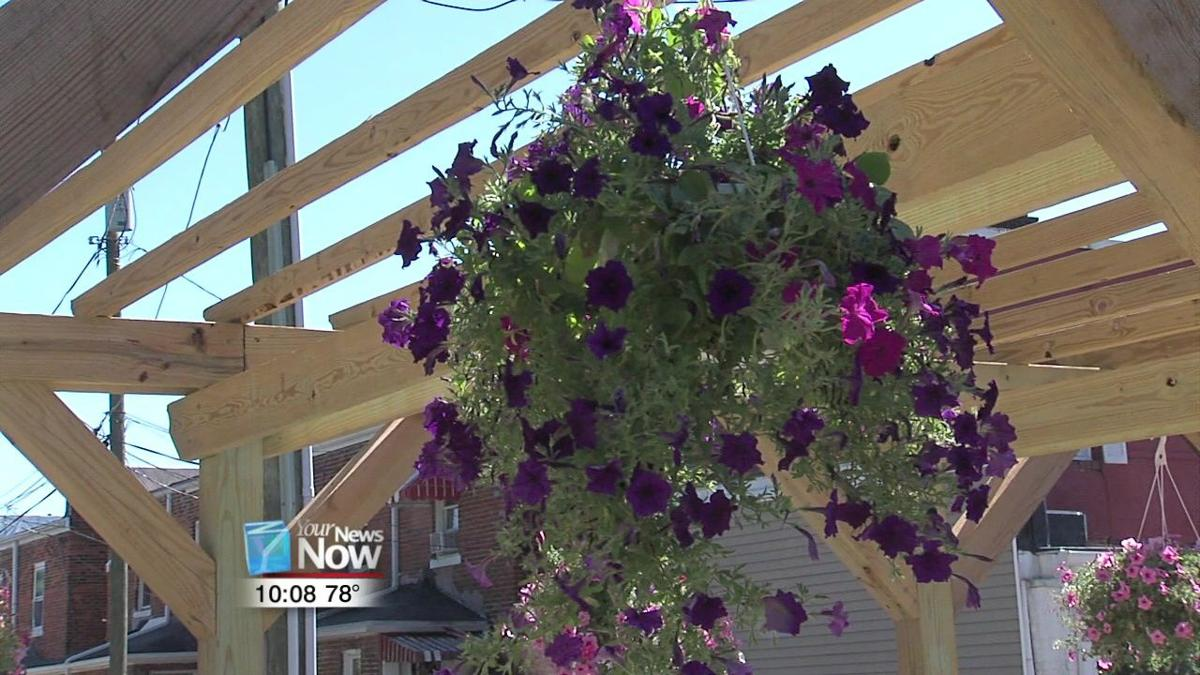 Springview Manor hosts garden party to show off residents' work 1.jpg