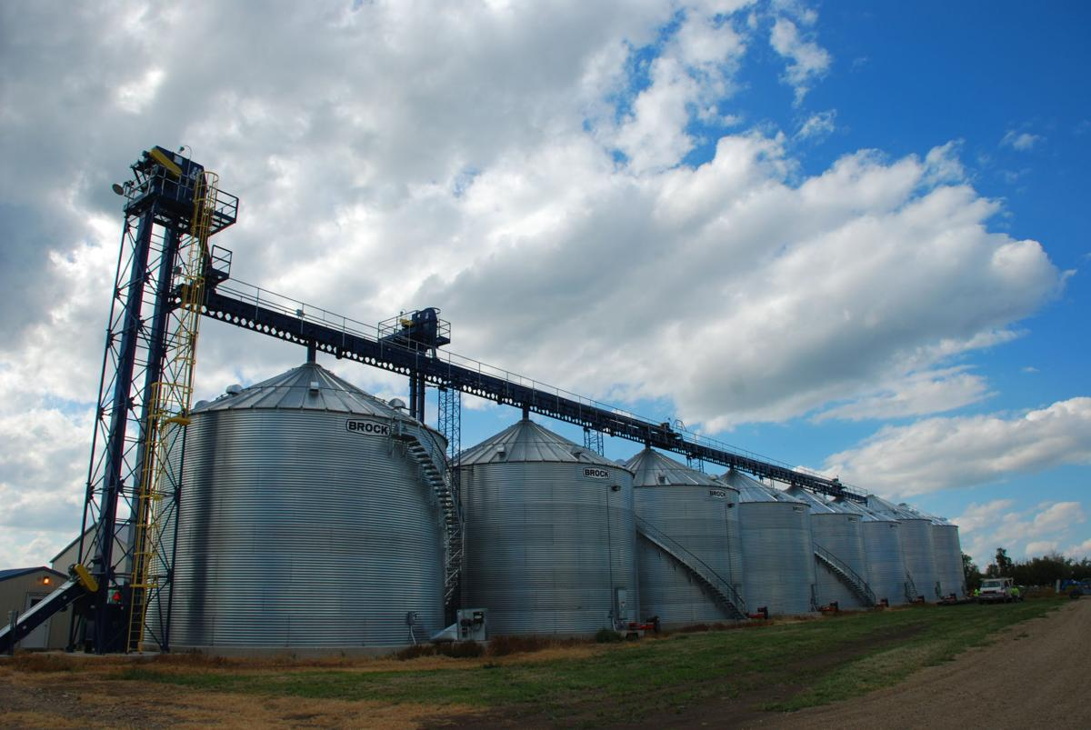 Some farmers find the benefits of on-farm storage | Ag News | hpj com