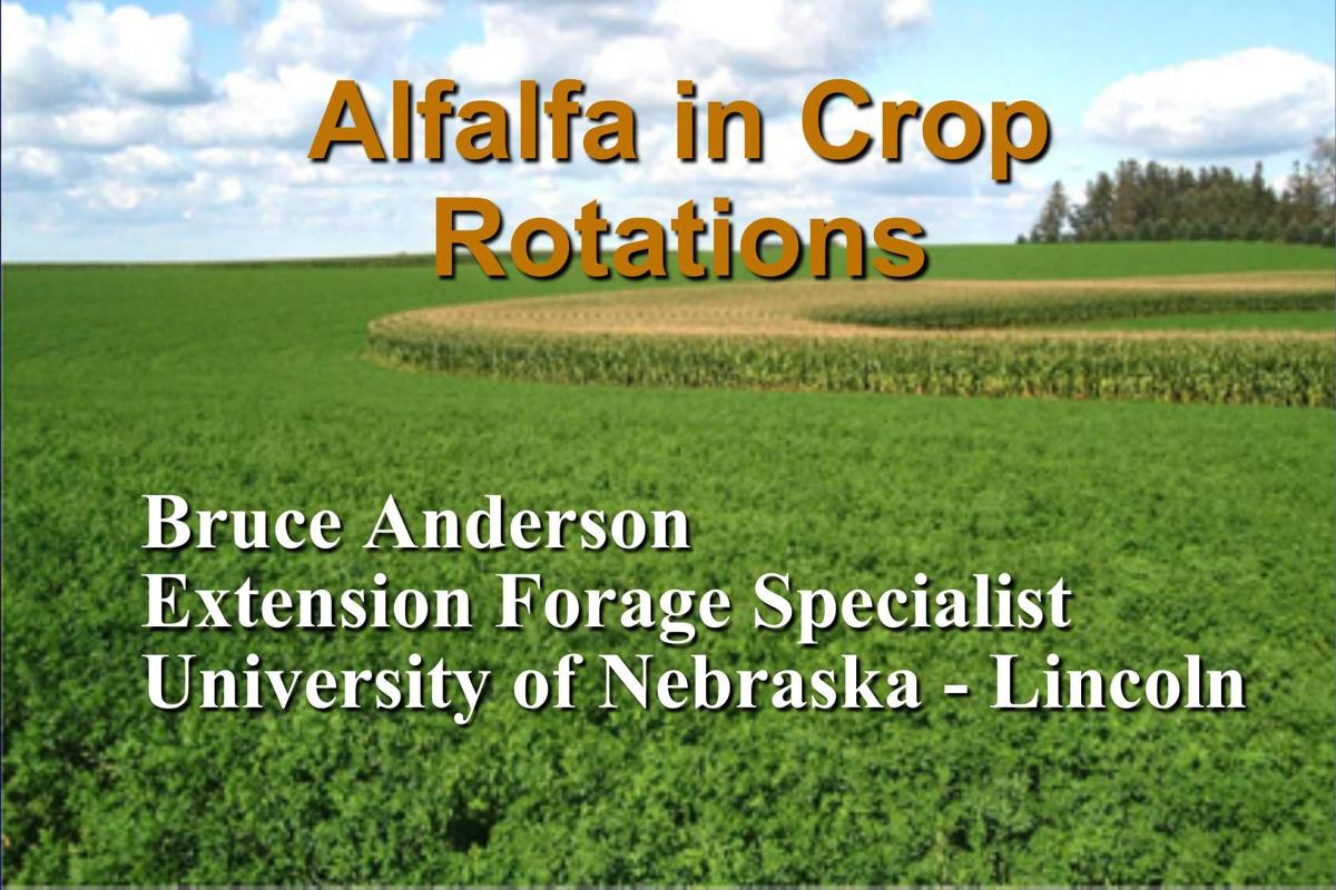 Alfalfa in Crop Rotations-Bruce Anderson