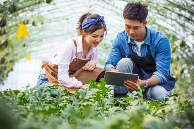 Sustainable Agricultural Innovations