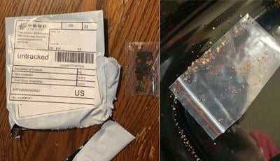 KDA Asks Public to Report Receipt of any Unsolicited Packages of Seeds.jpg