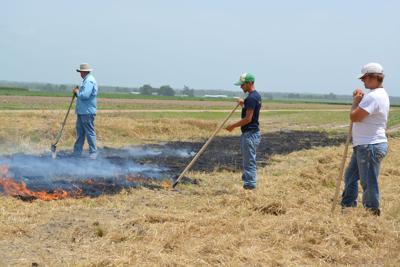 Fultz 3 men watching burn DSC_0065.jpg