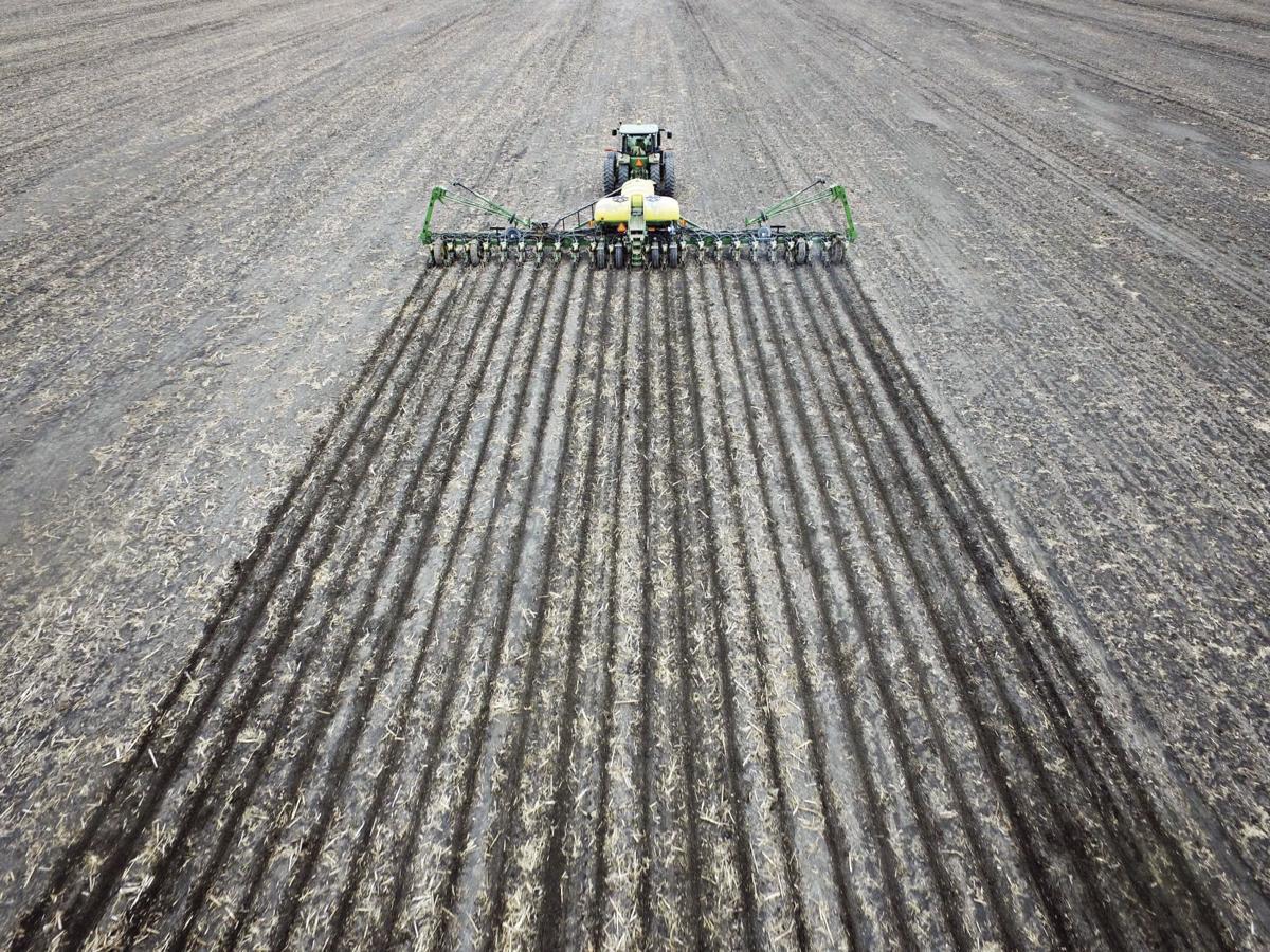 Corn Planting-L Kimbrell-Spring2CMYK.jpg