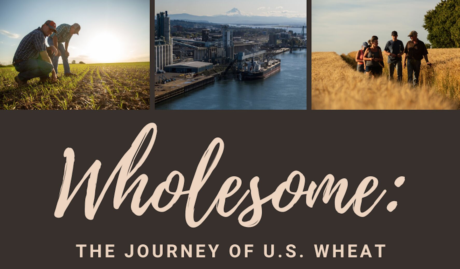 Movie shares the wholesome story of American wheat