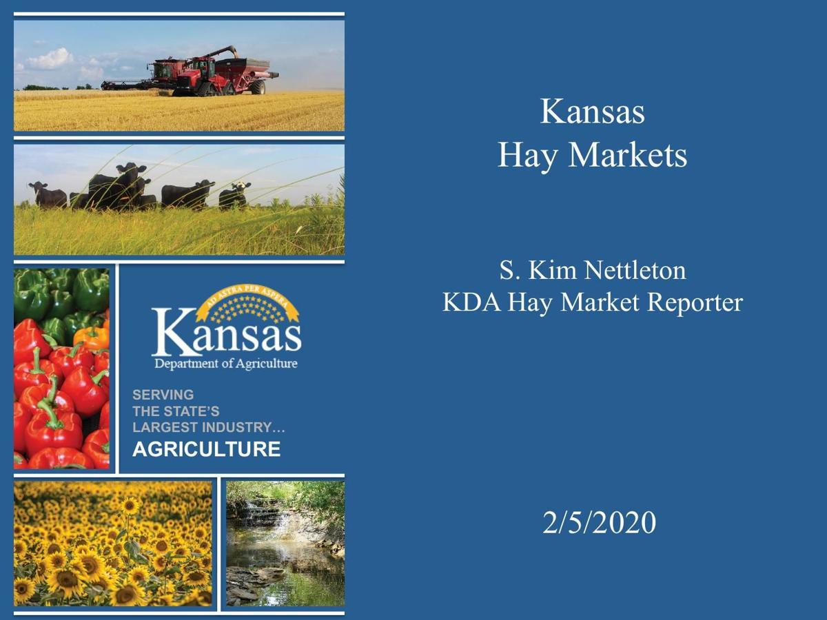 Hay Market News Update-Heath Dewey