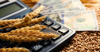 Dollar,Banknotes,,Calculator,And,Wheat,Grains,On,Wooden,Background.,Agricultural
