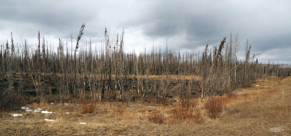 2020-11-10-p2-Mullen-Fire-Wyoming-GLS.jpg