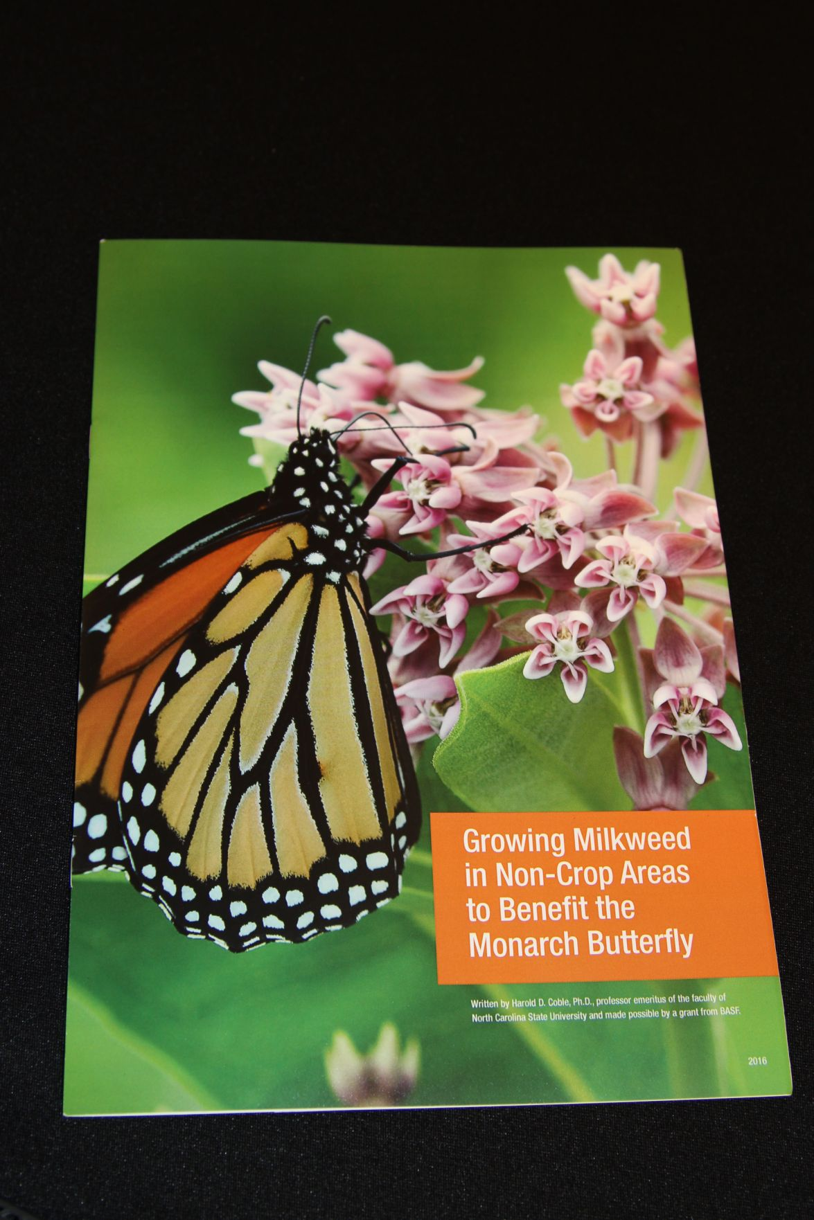 Basf Introduces Living Acres Initiative For Monarch Butterflies By