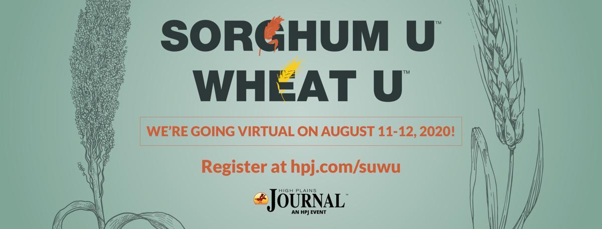 2020 Sorghum-Wheat U FB Cover v2.jpg